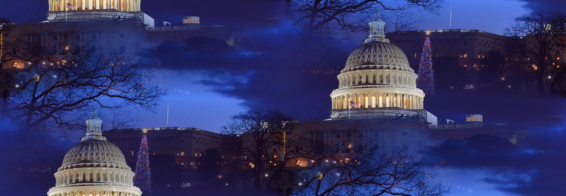 web site washington rework